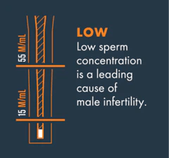 Recommendation for low sperm count in males