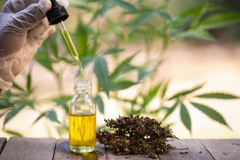 Does CBD Give You Energy