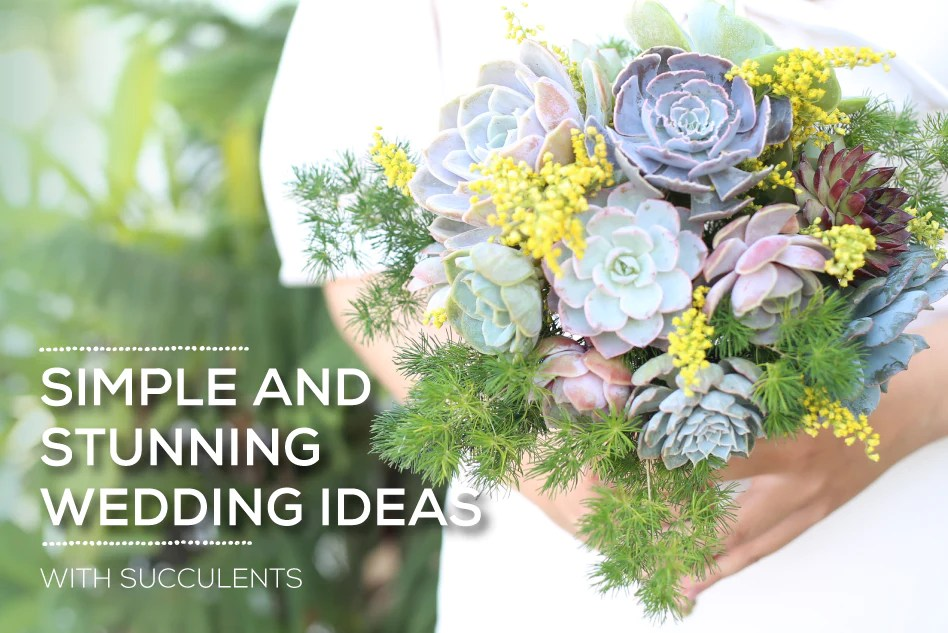 Simple And Stunning Succulent Wedding Ideas Succulents Box