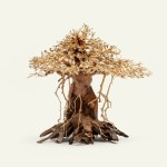 Bonsai Tree Driftwood Africana Hardscape Aquarium Aquascaping Wood Glass Aqua