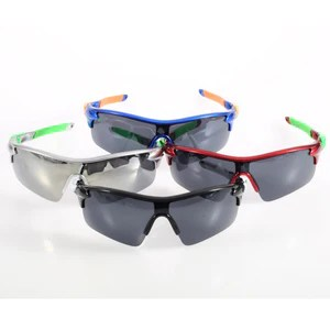Professional Polarized Sunglasses