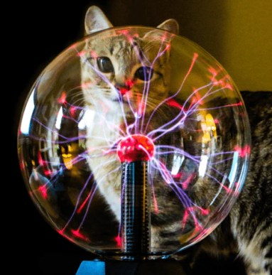 Image result for Epic Plasma Ball