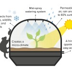 Why Grow In A Vegepod Palmers Garden Centre