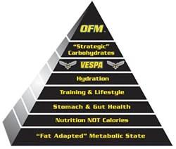 Optimized Fat Metabolism Pyramid