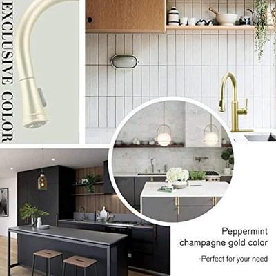 black kitchen faucet peppermint