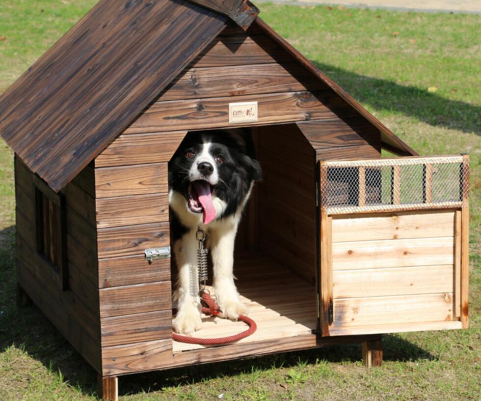 Aprende c mo hacer una casa de madera para perro f cil y - Como hacer una casa para perro grande ...