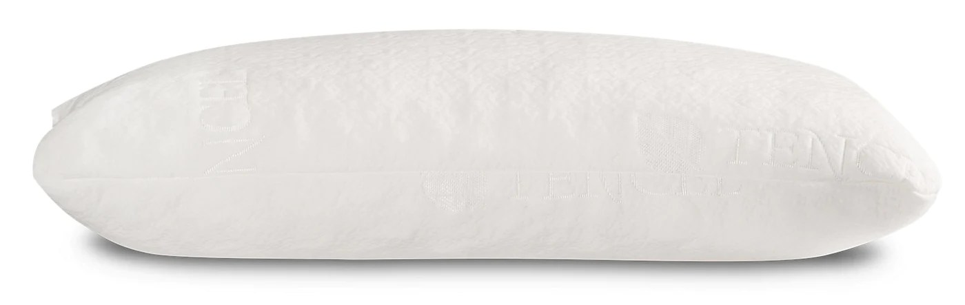 masterguard tencel memory foam queen pillow
