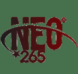 NEO PRO 2 iptvisions