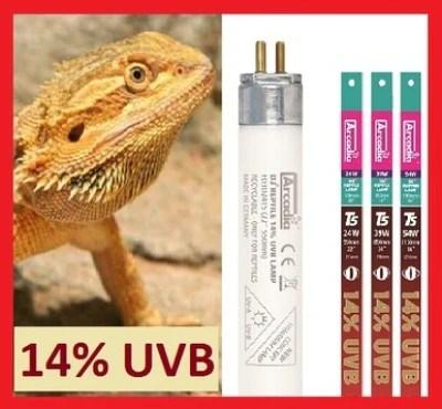 shop arcadia brand reptile supplies