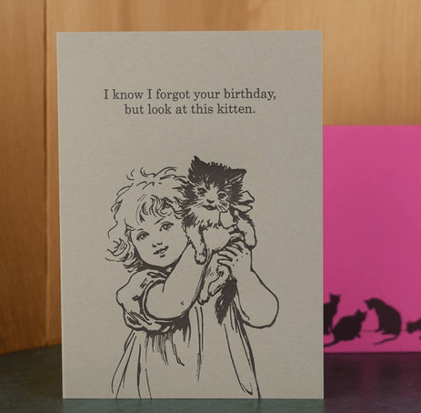 I Know I Forgot Your Birthday But Look At This Kitten Greeting Card Home