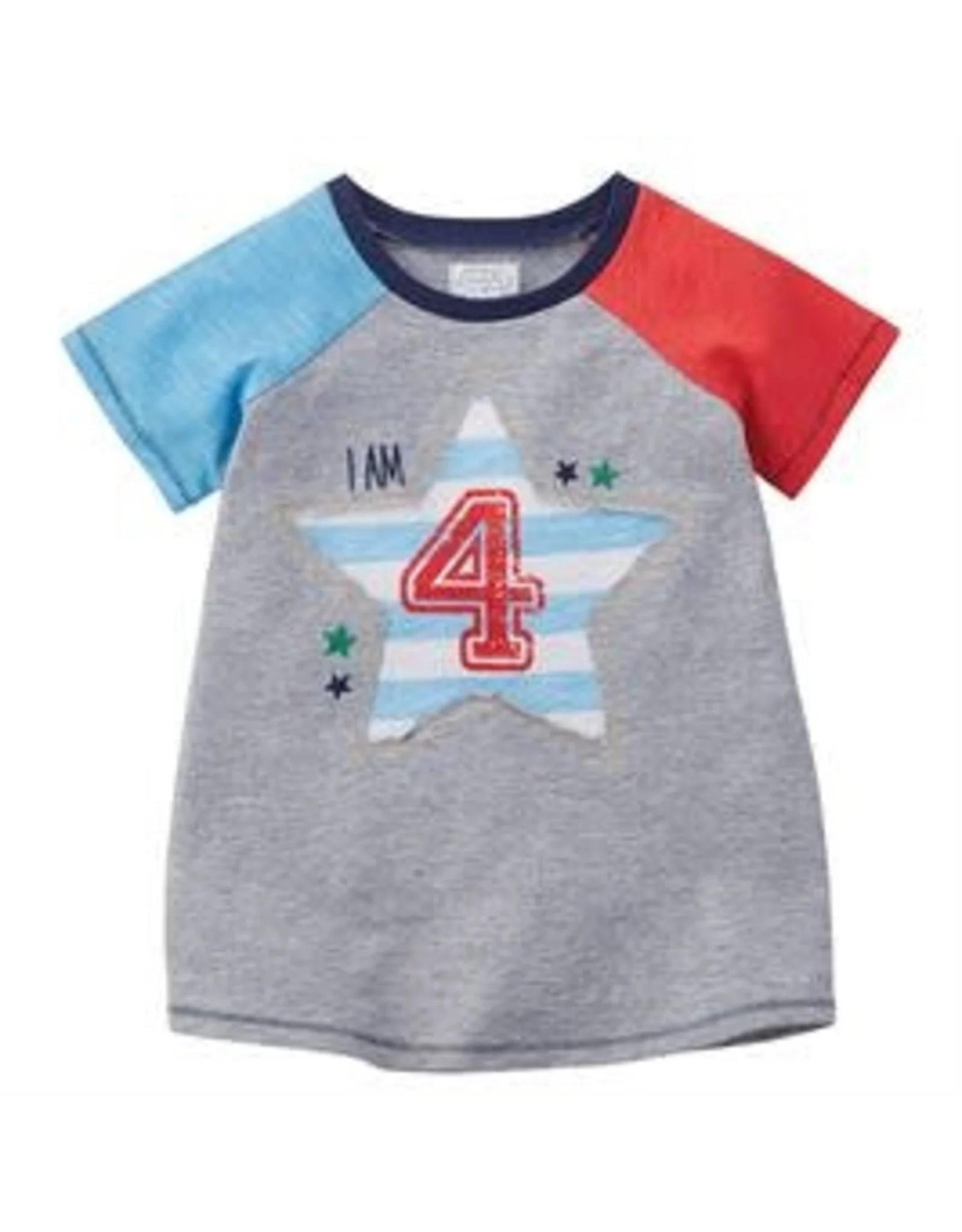 Mudpie Mud Pie Boy 4 Birthday Shirt 4t Freckles Children S Boutique