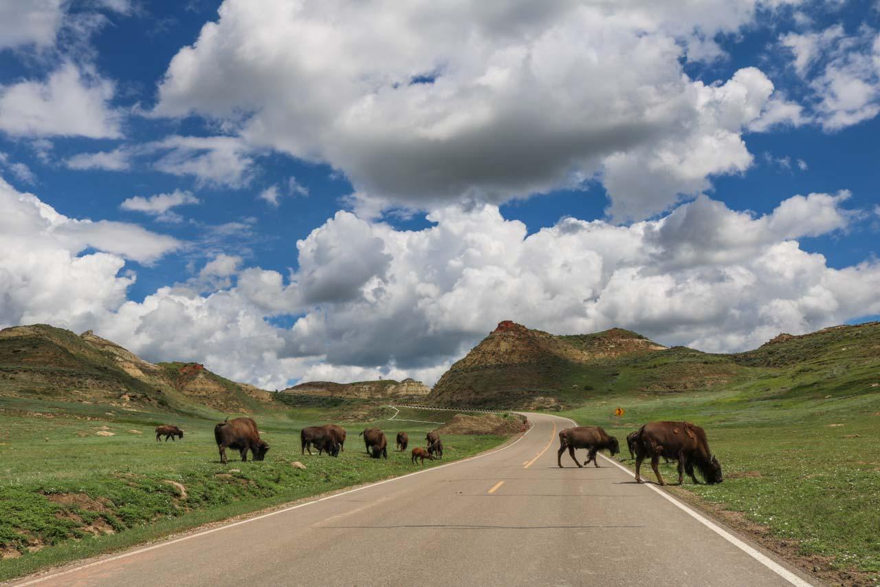 5 National Parks In North Dakota