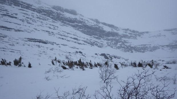 Entourée par la neige dans un épais drap blanc