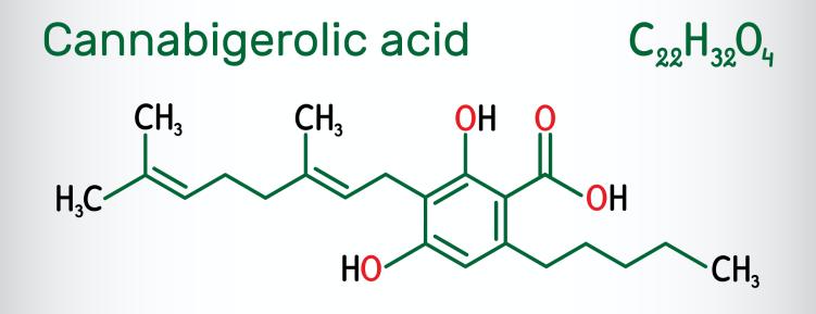 Cannabigerolic Acid - Best High CBG Hemp Strains