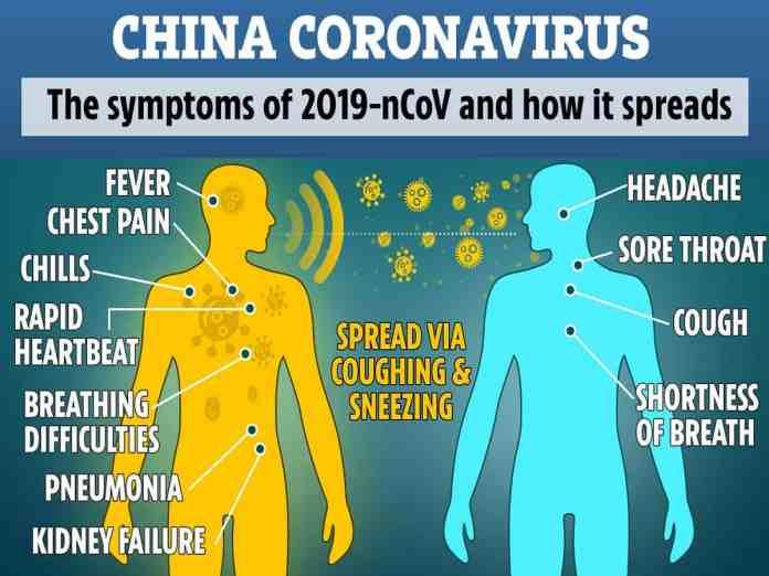 Image result for coronavirus symptoms