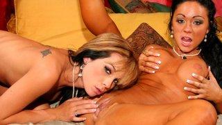 Sexy_big_breast_fun:_Cherokee,_Kirsten_Price image