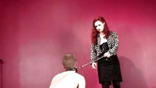 BDSM male sex slave used as a puppy dog image