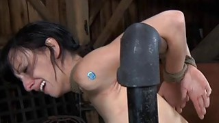 Image: Gagged cutie with clamped nipples acquires fun