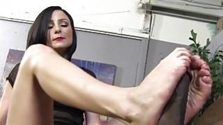 Veruca James Porn Videos image