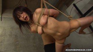 Submissive Asian bimbo Kana Sato gets roped and su image