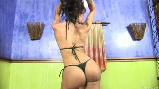 Gorgeous brunette shemale Kris Alves wants to play with your mind and fantasies image