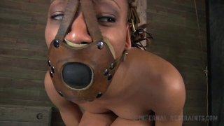 Caramel hottie Nikki Darling gets her soaking pussy fucked BDSM way image