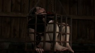 Snow white Asian hottie gets her ass stretched in the slave_cage image