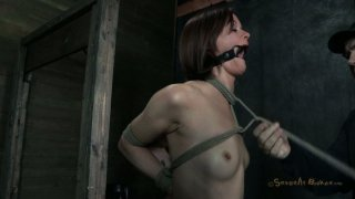 Skinny brunette Hazel Hypnotic is tied to the post and fucked in_the mouth image