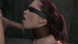 Sensual jordan carver busty Xxx video - Blindfolded chick with a_leather collar_melody jordan sucks a cock image