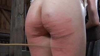 Tied up beauty acquires gratifying for_her twat image