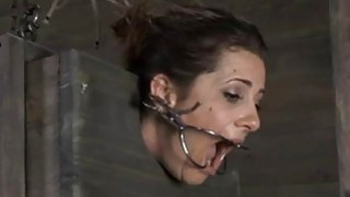Tied up serf acquires lusty pleasuring her vagina image