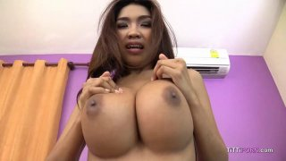 Yummy Thai girl with big tits sucks hard cock POV image