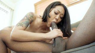 Image: Asian Saya Song guzzles the huge black python