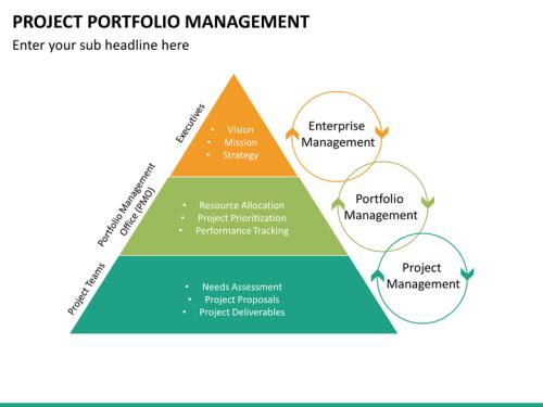 Image result for project portfolio management