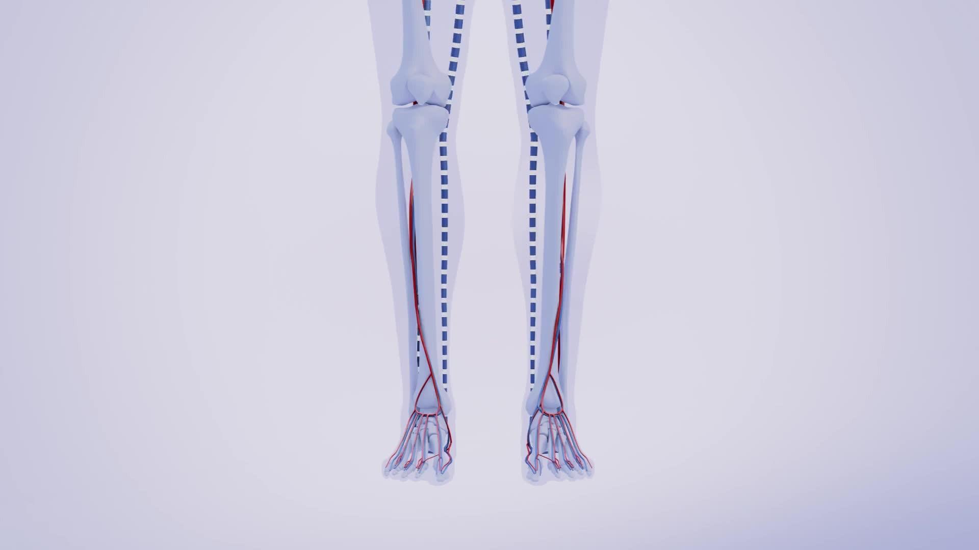 https www apotheken umschau de krankheiten symptome herz kreislauf erkrankungen thrombose ursachen therapien und vorbeugung 740009 html