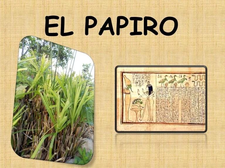 Resultado de imagen para El papiro