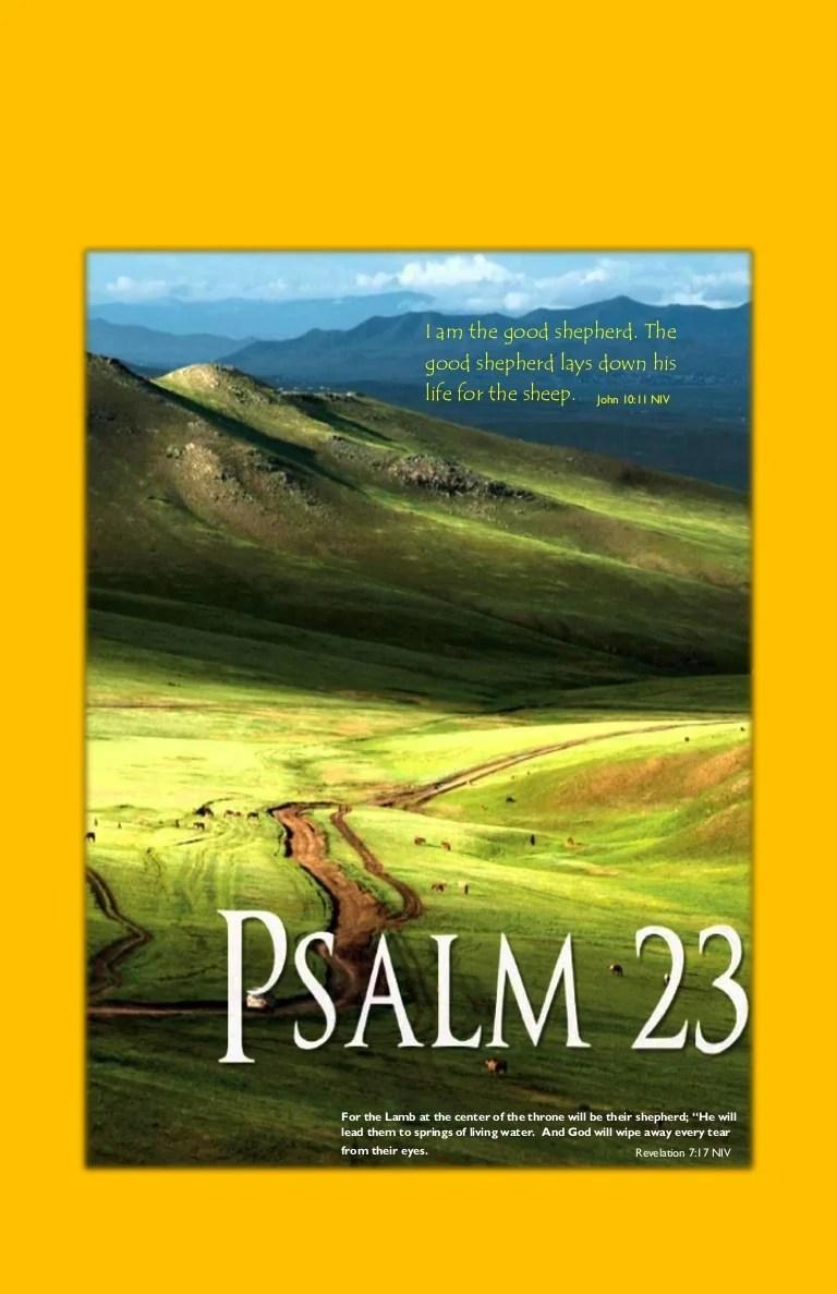 23 David My Psalm Lord Shepherd
