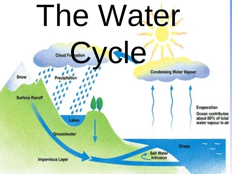 The Water Cycle Final Product