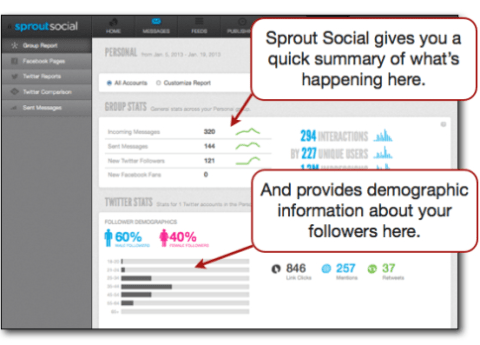 Sprout Social summary demographics