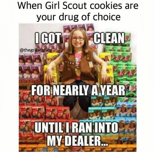 23 Delicious Memes About Girl Scout Cookies Someecards Memes