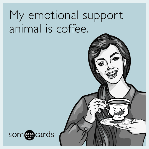My Emotional Support Animal Is Coffee Confession Ecard