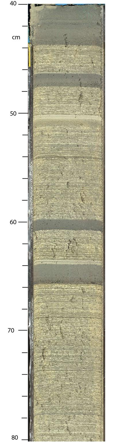 Core from one of the expedition boreholes, showing sediments deposited during the glaciated periods in the last 800,000 years.