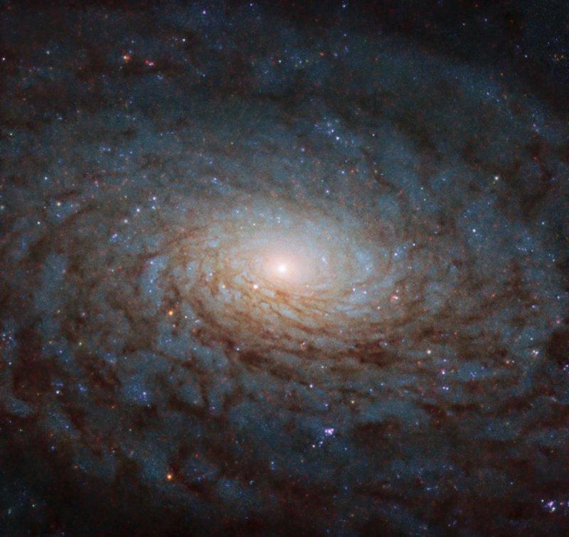 A Galactic Portal