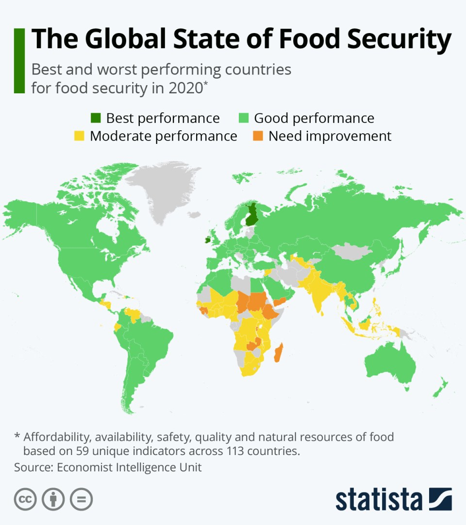 We Need to Improve Global Food Security