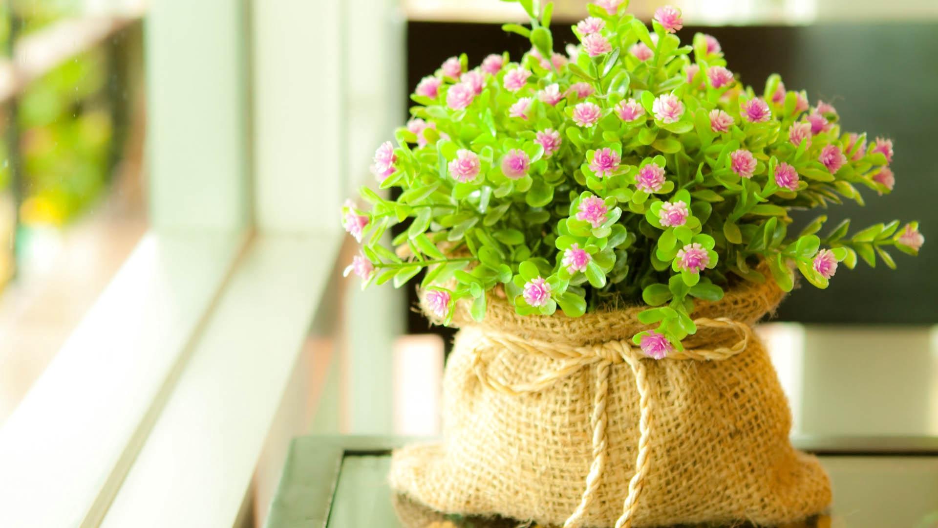 Floral Cute Desktop Wallpaper Full Screen