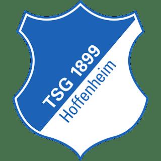 hoffenheim-logo-512x512-px