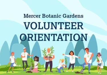 Volunteer Orientation, 2615 Ciderwood Dr, Spring, TX 77373-6547, United  States, 11 February 2021