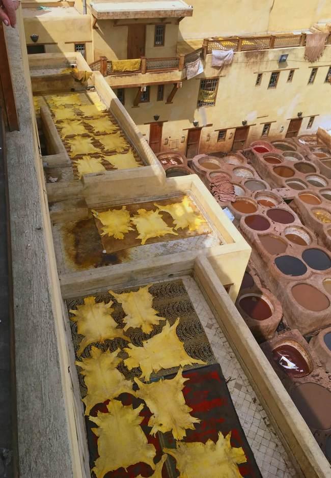 Dans la tannerie à Fès, des peaux sèchent au soleil.