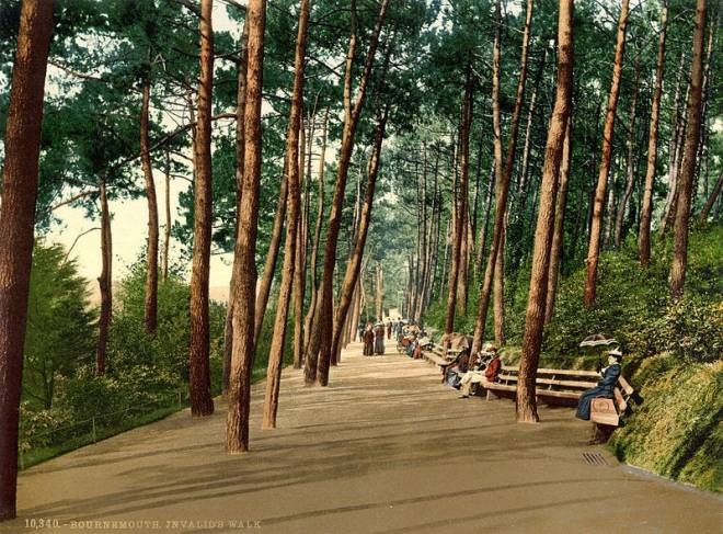 File:Invalids' walk, Bournemouth, Dorset, England, 1890s.jpg