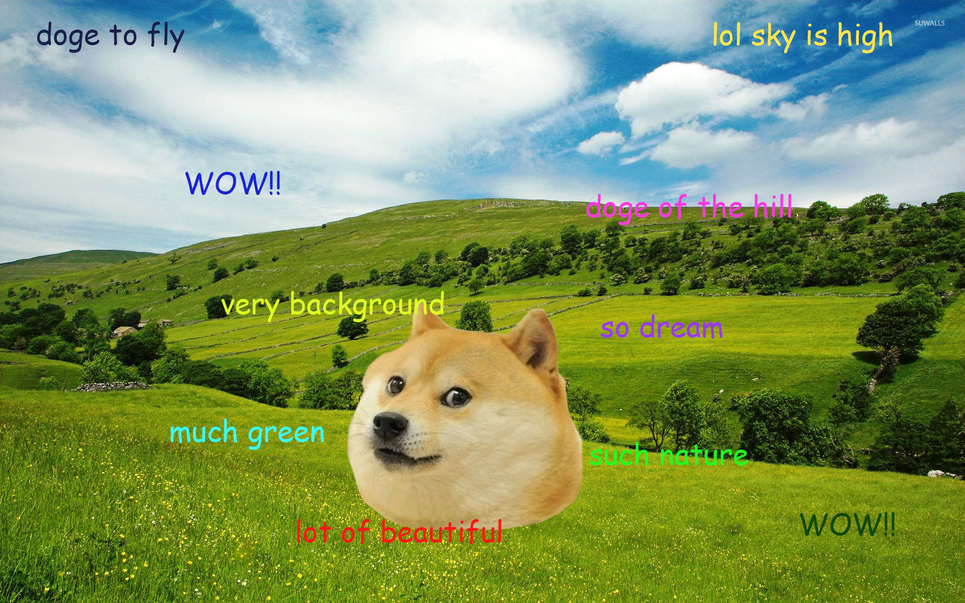 Doge Hd Wallpapers New Tab Meme Theme